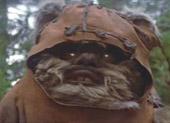 My Ewok